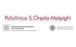 bologna_sito_copia
